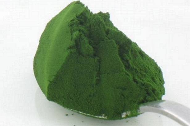 superfood-chlorella1.jpg